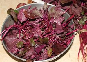 Amaranthus Image - Best Indian Superfoods