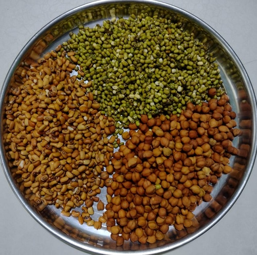 How to prepare sprouts at home? Soaked Seeds - Revamp Mind