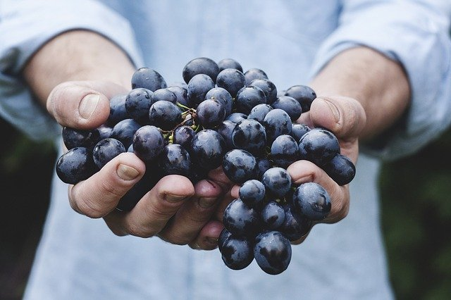 Grapes - Cool foods for summer, Summer foods