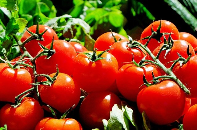 Tomatow- summer season fruits and vegetables, Summer foods